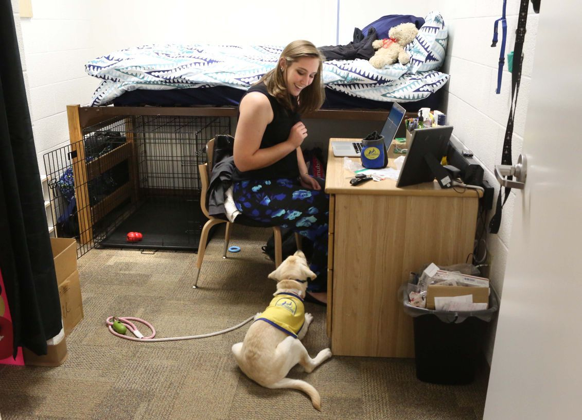 college student with therapy dog