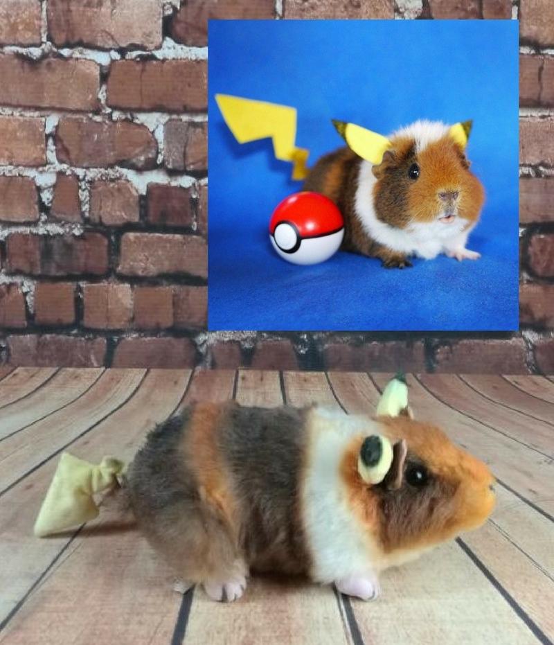 Fuzzberta Pikachu