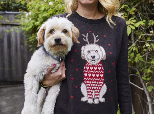 holiday gift for pet lovers