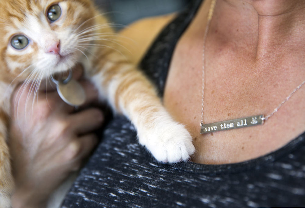 unique gifts for animal lovers