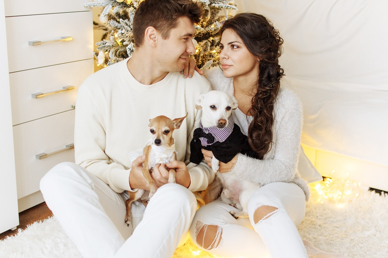 Dog Gift Ideas For Dog Owners