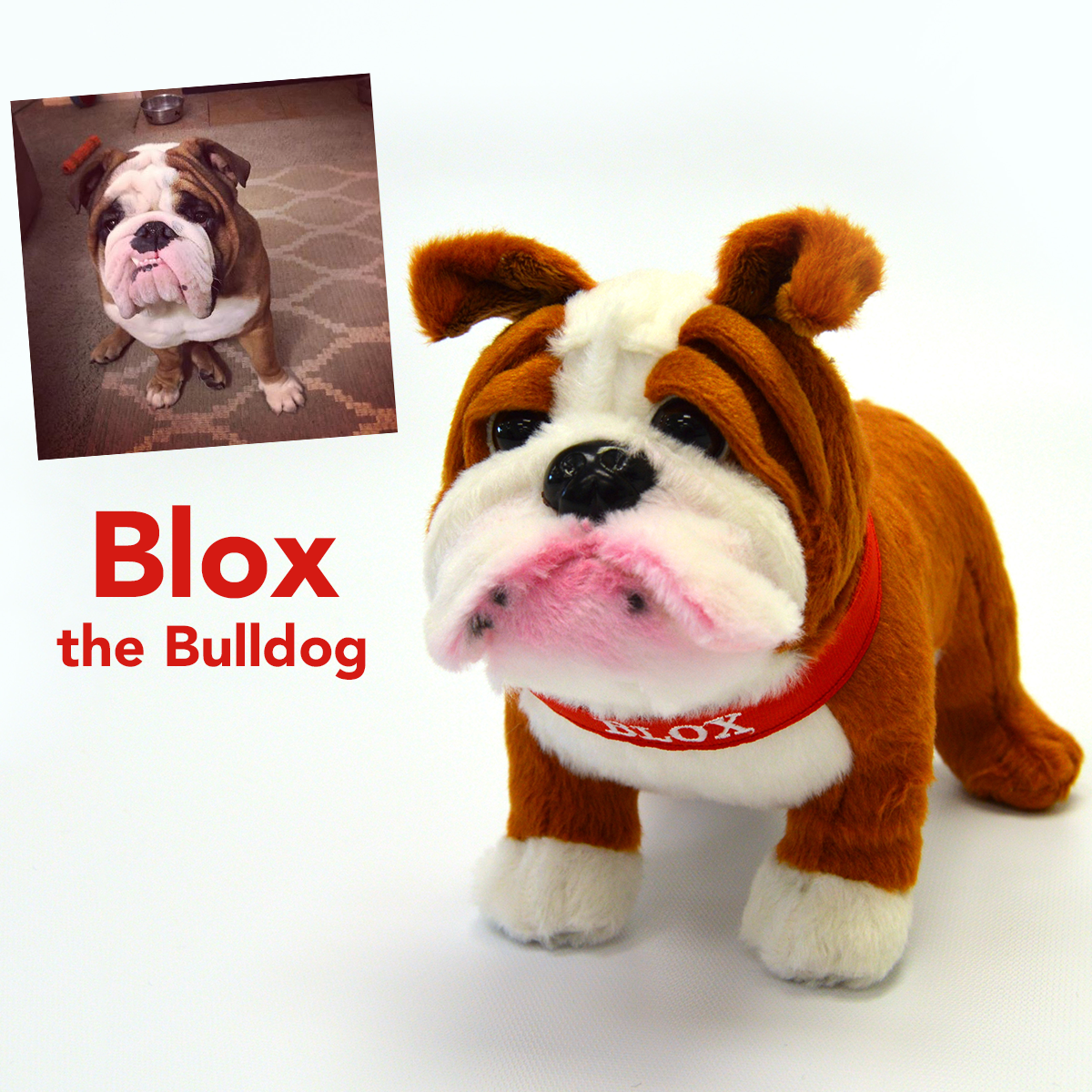 blox the bulldog stuffed animal -