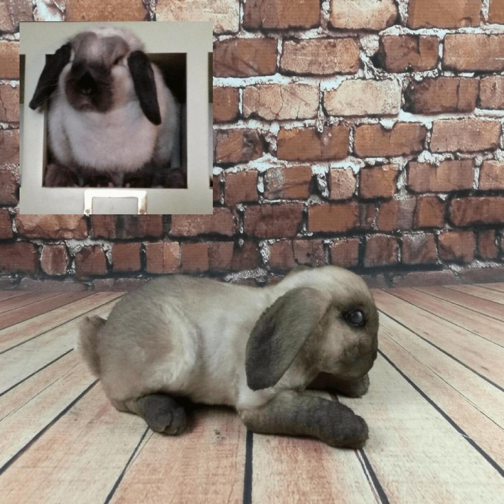 realistic bunny plush