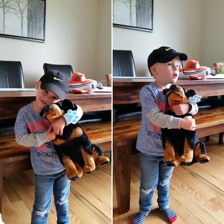 turn dog into stuffed animal