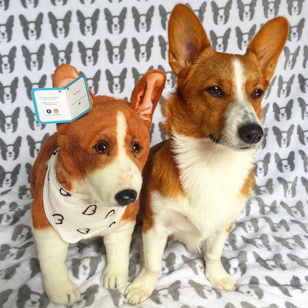 Corgi stuffed animal plush