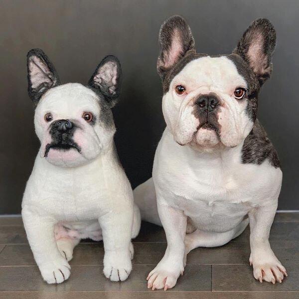 French Bulldog Stuffed Animal Plush