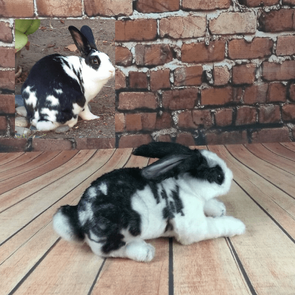 Stuffed Bunny Rabbits Realistic Lookalike