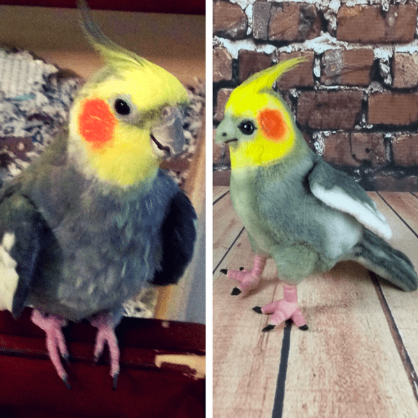 Bird custom stuffed animals lookalike