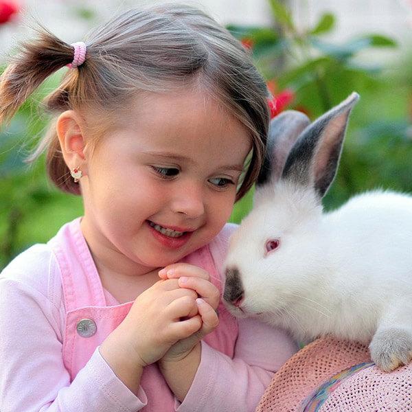 bunny and kid