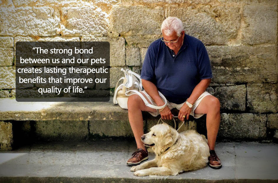Dementia pet therapy