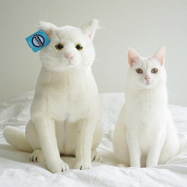 Personalized Pet Stuffed Animal Plush Lookalike