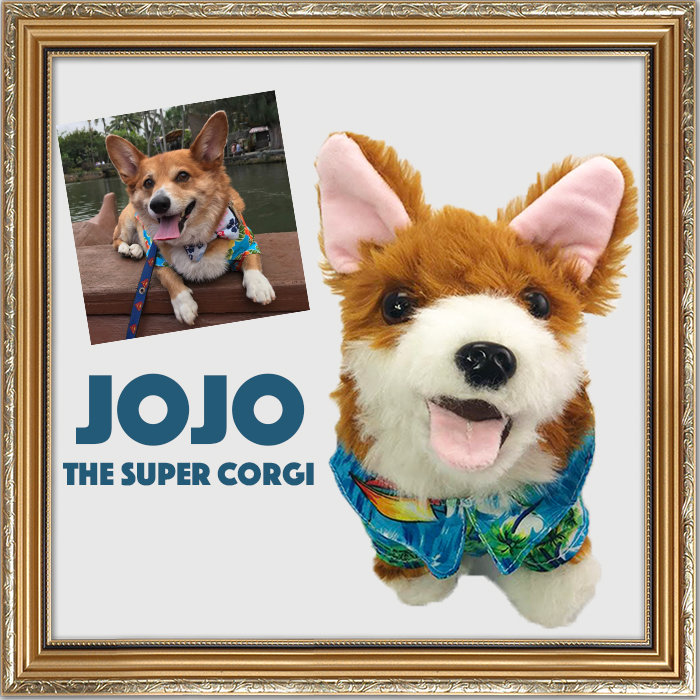 jojo the corgi products
