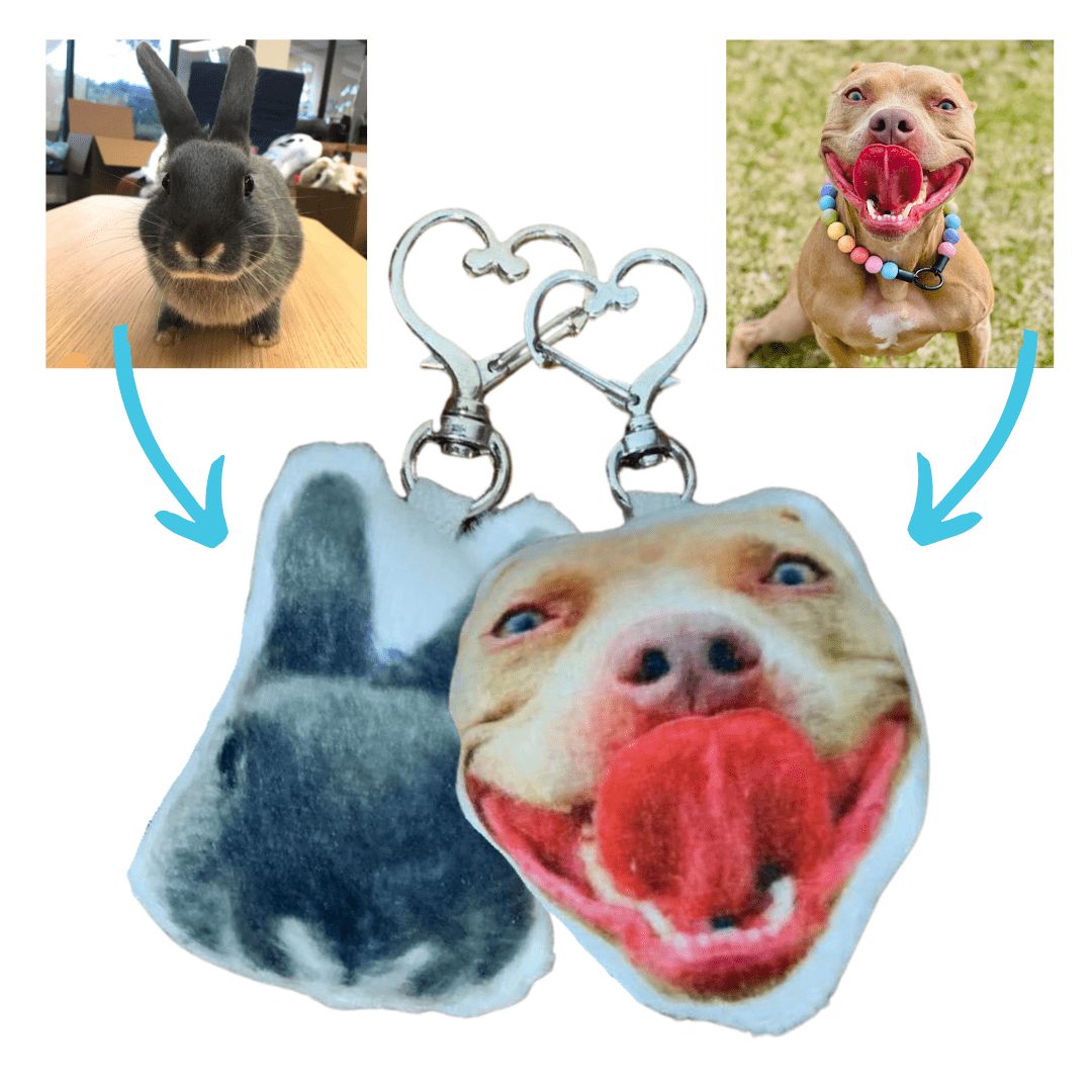 photo pillow keychains of pet
