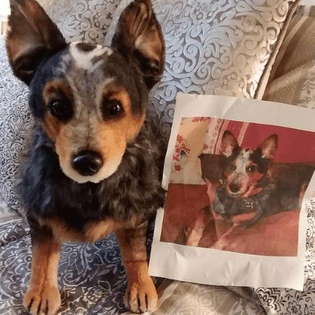 Pet Memorial, Pet Loss Gift| Petsies