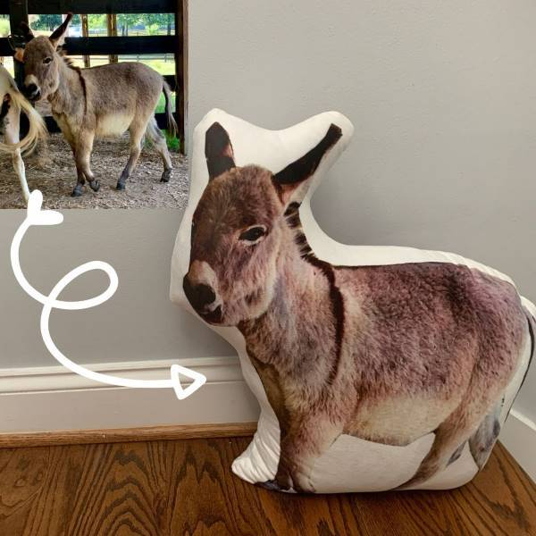 Donkey super soft pet petsies pillow