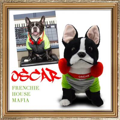 Oscar the Frenchie