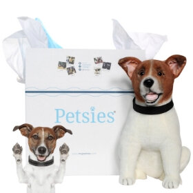 3cc93ff5adc9 Custom Stuffed Animals of Pets, 100% Quality Guarantee | Petsies