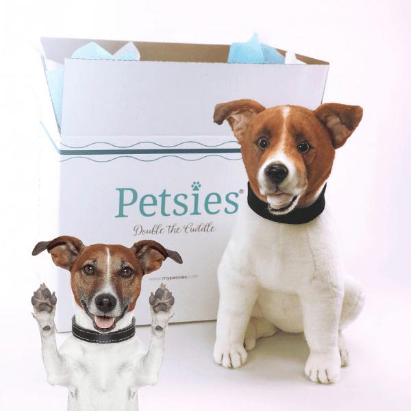 Custom Stuffed Animals Of Pets 100 Quality Guarantee Petsies