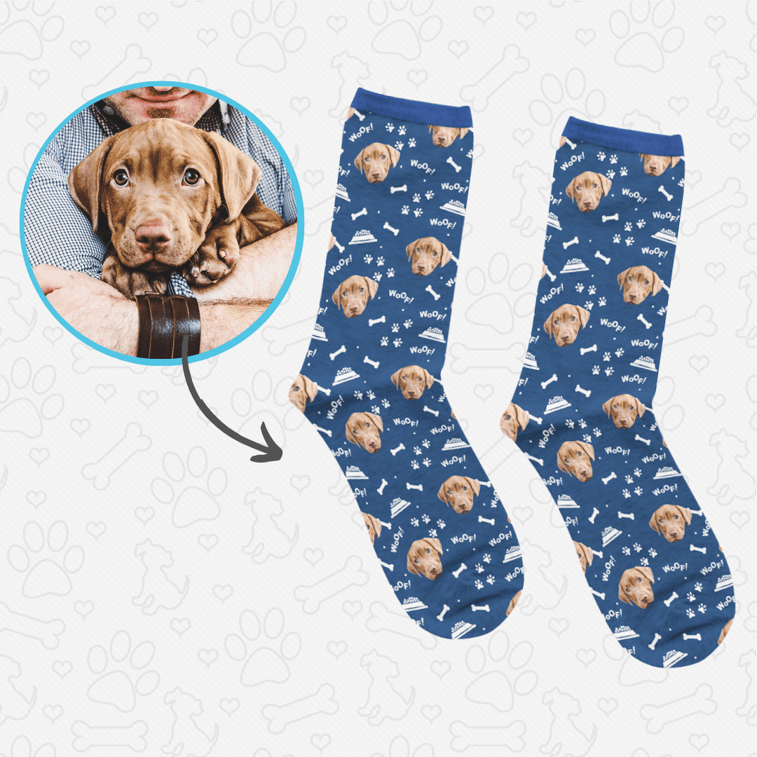 pet socks price