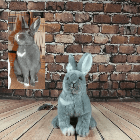 stuffed rabbits that look real