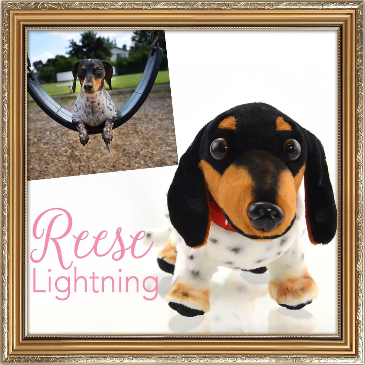 Reese Lightning