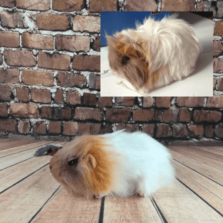 realistic hamster plush