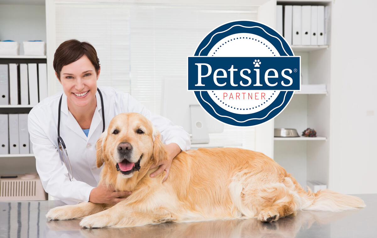 partner with petsies